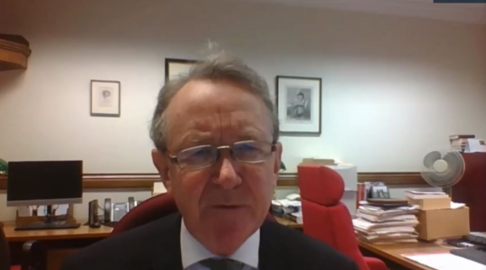 Lord David Alton of Liverpool addresses the NCRI webinar
