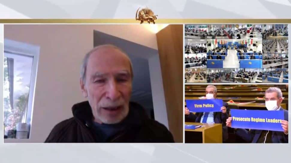 Prof. Eric David speaks to the online conference - February 4, 2021