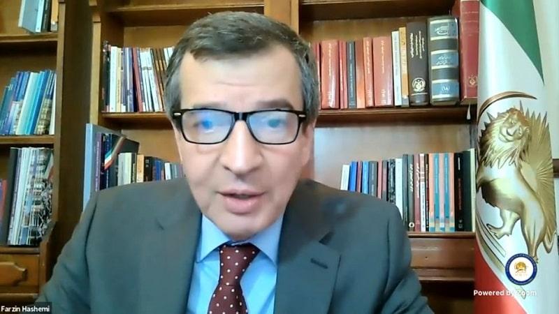 Farzin Hashemi speaks to the online panel - February 4, 2021