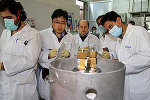 Nuclear inspectors