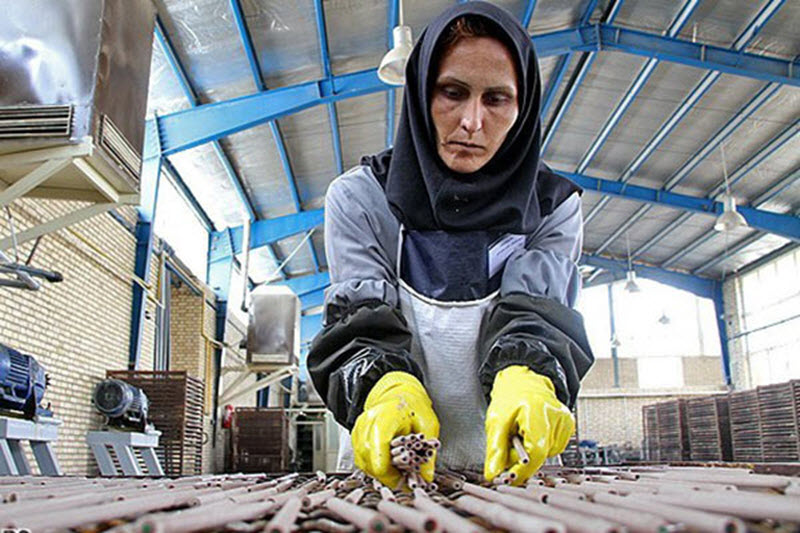 Iran Regime in Denial over Plight of Workers